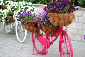 floral-bike-1235961_960_720